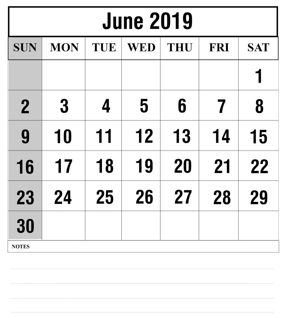 Fillable June 2019 Calendar Printable with Notes