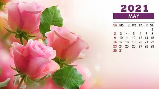 May 2021 Calendar Rose Pink Flowers Wallpaper