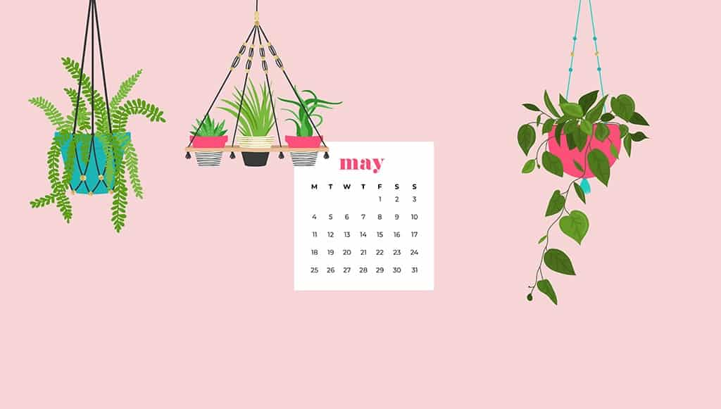 May wallpapers for desktops and smart phones