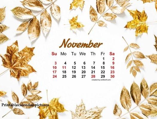 Floral November 2019 Calendar Cute