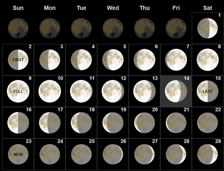 Full February 2020 Moon Phases Calendar