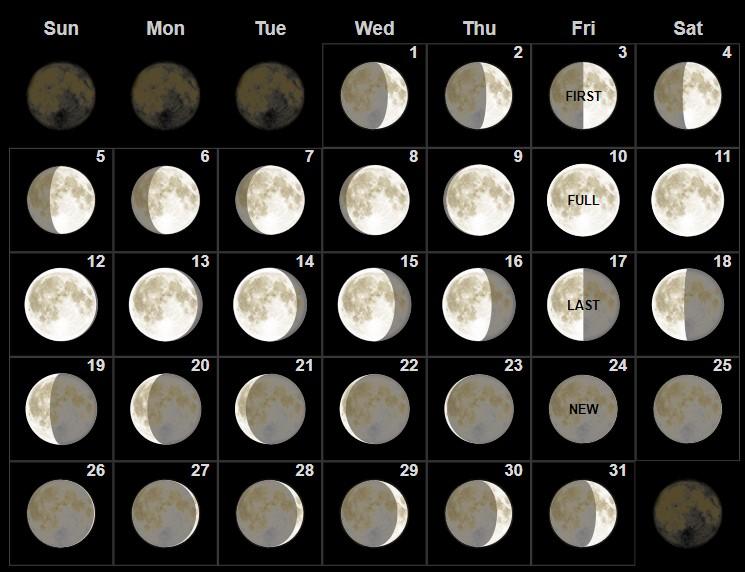 January 2020 Moon Phases Calendar