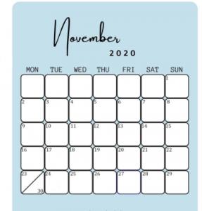 November 2020 Calendar Light blue