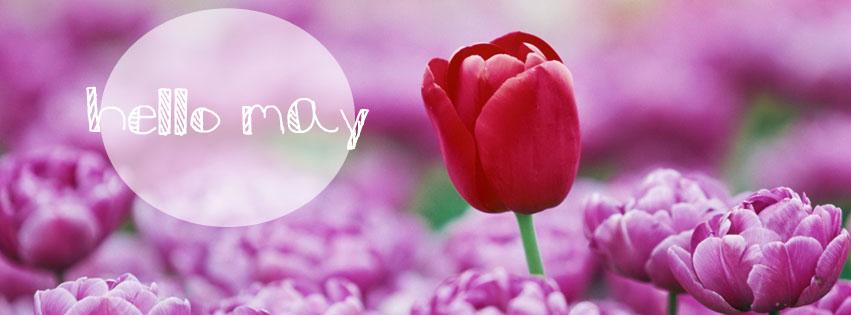 Hello May Facebook Cover