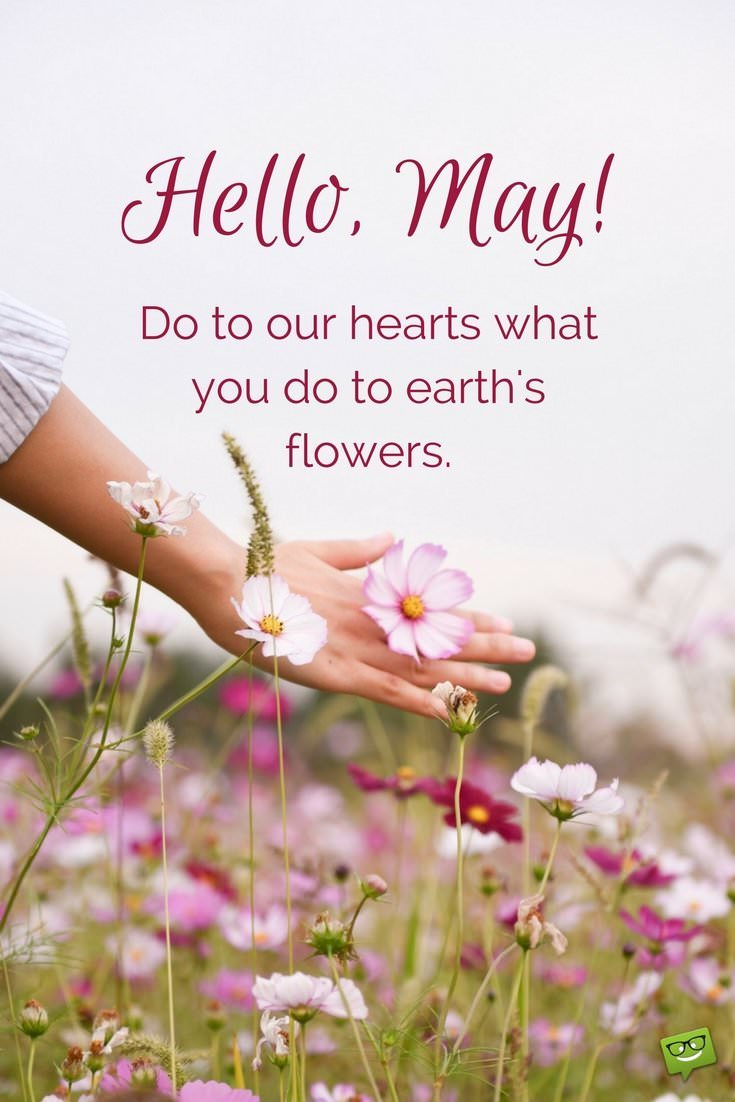 Hello May Quotes Messages
