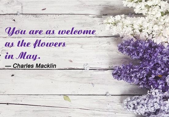 Hello May Quotes Sayings
